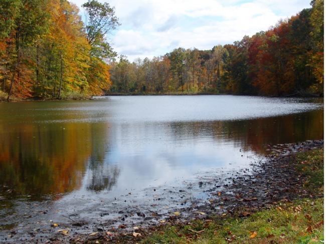 Private Lake Vacation Rental 7497 Lakehousevacations