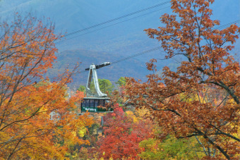 Lake House Enjoy Incredible Views and your own Theater Room, , on Douglas Lake in Tennessee - Lakehouse Vacation Rental - Lake Home for rent on LakeHouseVacations.com