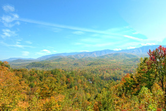 Lake House Outdoor Firepit - Secluded 1 Bedroom Near All The Fun, , on Douglas Lake in Tennessee - Lakehouse Vacation Rental - Lake Home for rent on LakeHouseVacations.com